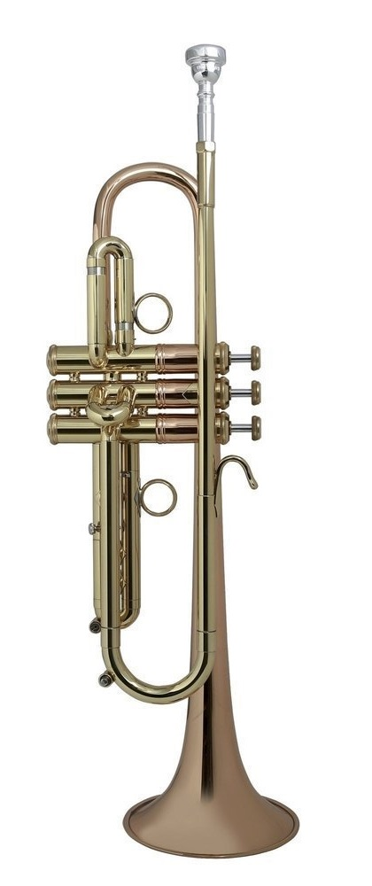 Bach, Vincent - LT190 - 1B - Blechblasinstrumente - Trompeten mit Perinet-Ventilen | MUSIK BERTRAM Deutschland Freiburg