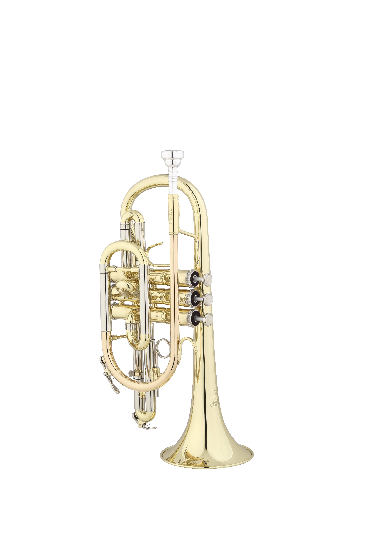 Eastman/USA - ECN - 422 - Blechblasinstrumente - Kornette | MUSIK BERTRAM Deutschland Freiburg