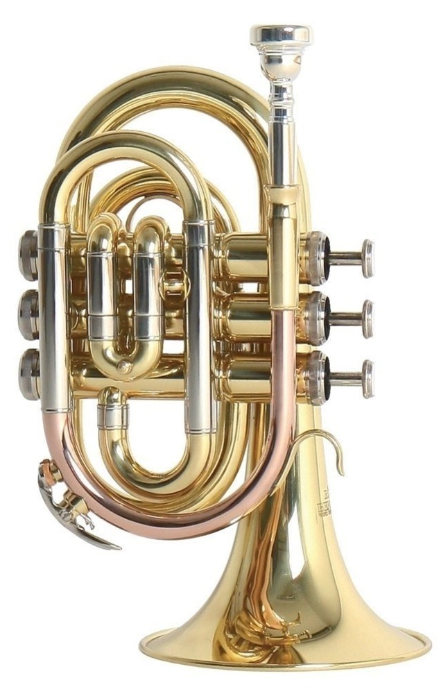 Roy Benson - PT-302 - Taschentrompete - Blechblasinstrumente - Trompeten mit Perinet-Ventilen | MUSIK BERTRAM Deutschland Freiburg