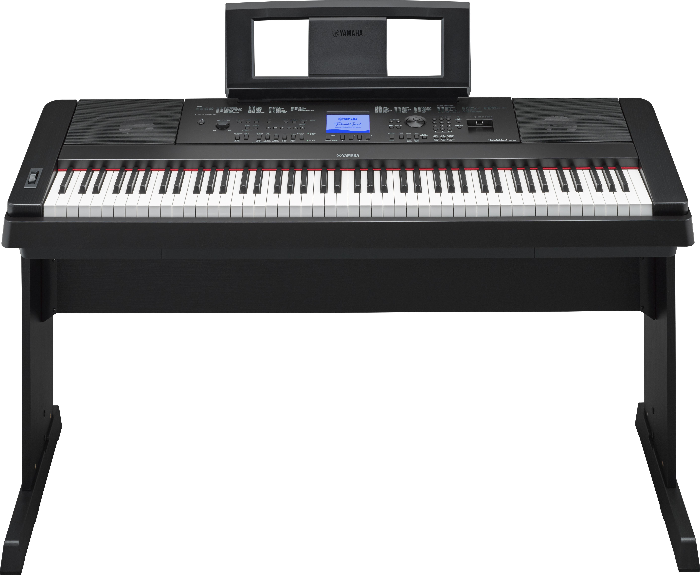 Yamaha - DGX-660 B - Tasteninstrumente - Home Digital Pianos | MUSIK BERTRAM Deutschland Freiburg