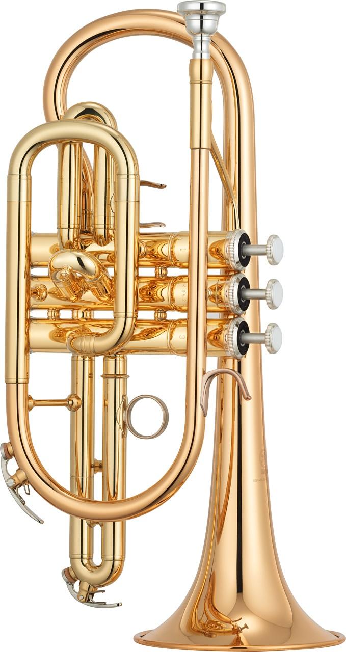 Yamaha - YCR-4330G II - Blechblasinstrumente - Kornette | MUSIK BERTRAM Deutschland Freiburg
